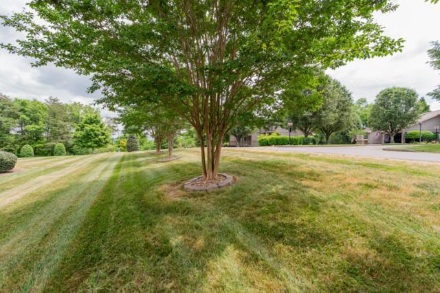 205 Chota View Circle, Loudon, TN 37774 (#1042469) :: Billy Houston Group