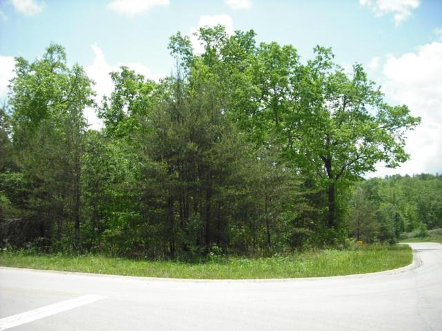 Riverview Ct. (Lot #43), Crossville, TN 38555 (#1042500) :: Billy Houston Group
