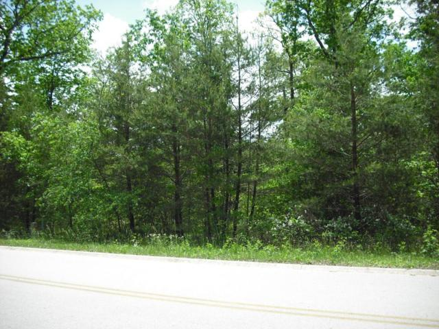 Riverview Ct. (Lot #44), Crossville, TN 38555 (#1042506) :: Billy Houston Group