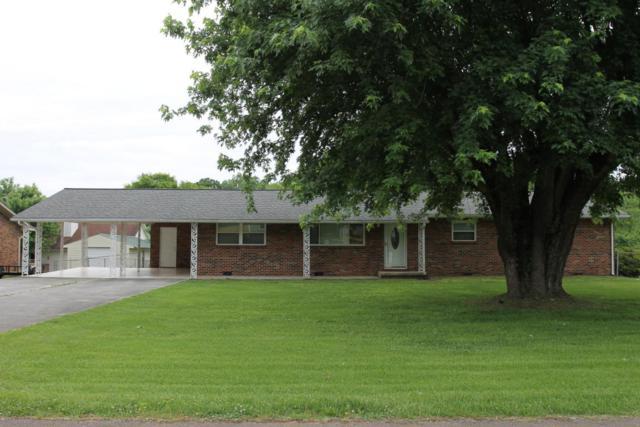 411 Iroquois Lane, Seymour, TN 37865 (#1042570) :: Shannon Foster Boline Group