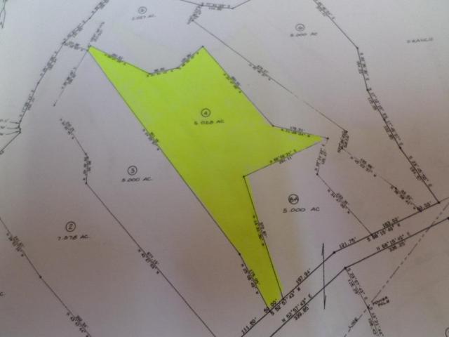 +- 7.76 Ac Lower Rinehart Rd, Dandridge, TN 37725 (#1042581) :: Billy Houston Group