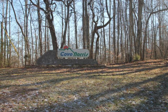 Cove Norris Rd, Caryville, TN 37714 (#1042654) :: Shannon Foster Boline Group