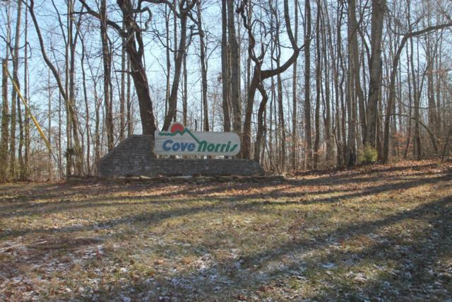 Cove Norris Rd, Caryville, TN 37714 (#1042672) :: Shannon Foster Boline Group