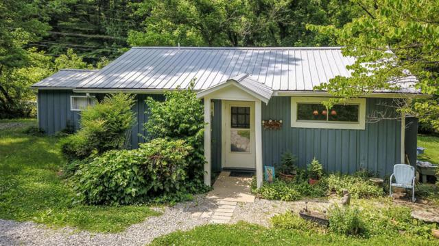 2035 Old Chilhowee Rd, Seymour, TN 37865 (#1042699) :: Shannon Foster Boline Group