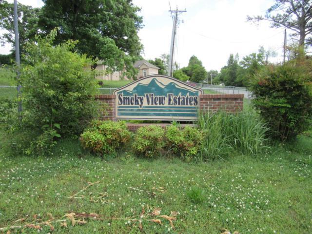 Smoky View Lane, Madisonville, TN 37354 (#1042748) :: Billy Houston Group