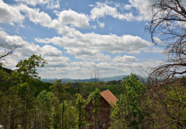 2317 Fox Berry Way, Sevierville, TN 37876 (#1042802) :: Shannon Foster Boline Group
