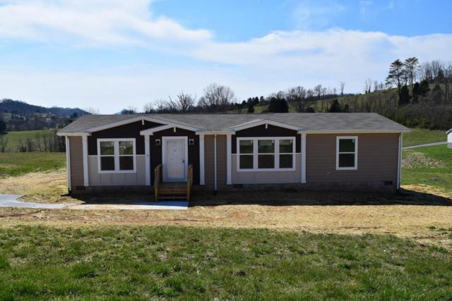 169 Rolling Hills Rd, Church Hill, TN 37642 (#1042816) :: Billy Houston Group