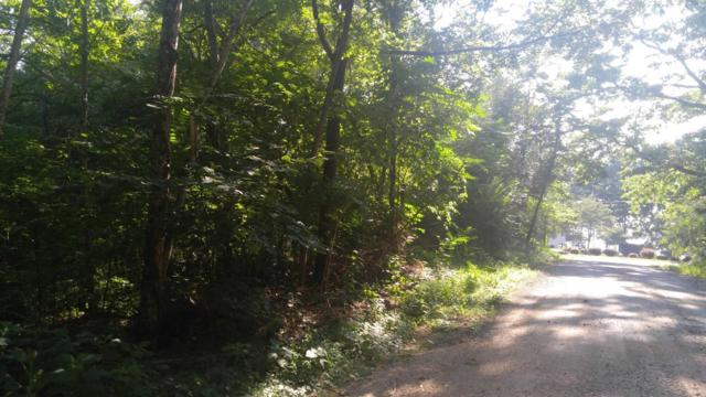 Lot 91 Cypress Drive, Spring City, TN 37381 (#1042835) :: Billy Houston Group