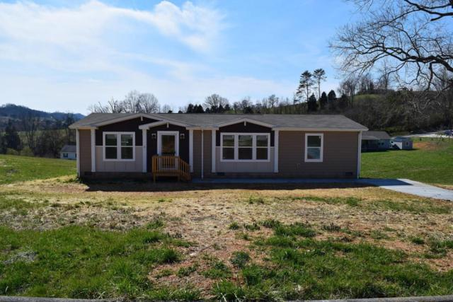 177 Rolling Hills Rd, Church Hill, TN 37642 (#1042837) :: Billy Houston Group