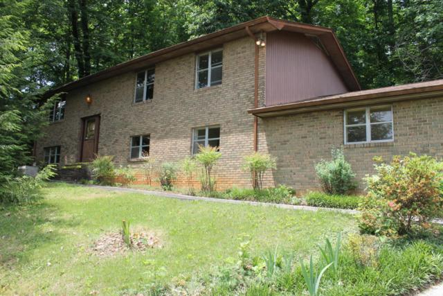 6112 Grove Drive, Knoxville, TN 37918 (#1042904) :: Billy Houston Group
