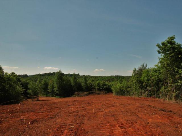 544 Curtis Rd., Tellico Plains, TN 37385 (#1042924) :: CENTURY 21 Legacy