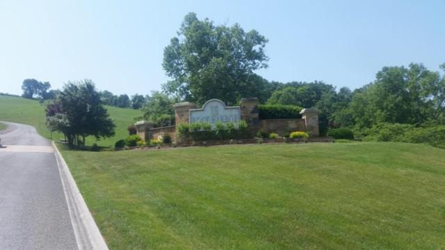 Jade Lane, New Tazewell, TN 37825 (#1042973) :: Shannon Foster Boline Group