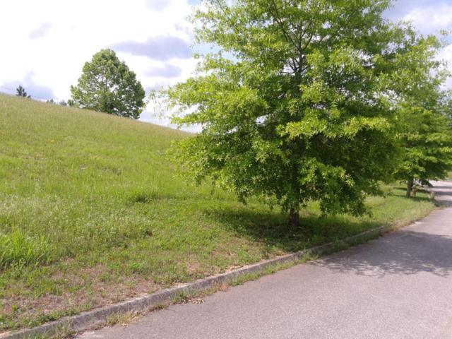 103 Checkerberry Rd, Oak Ridge, TN 37830 (#1043006) :: Shannon Foster Boline Group