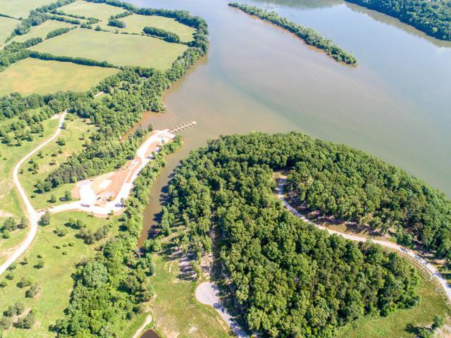 Twin Lakes Drive, Loudon, TN 37774 (#1043029) :: Realty Executives Associates