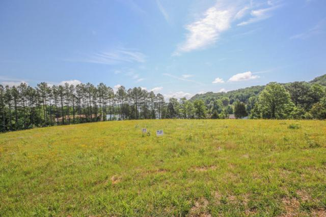340 Enclave Way, Kingston, TN 37763 (#1043093) :: Billy Houston Group