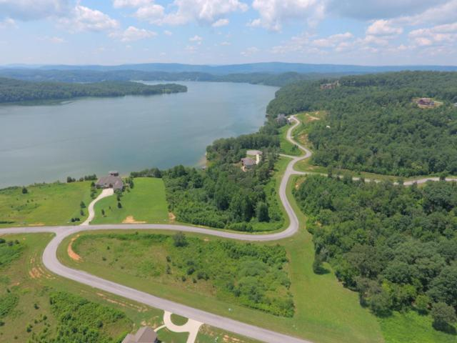Water View Drive, Rockwood, TN 37854 (#1043120) :: Billy Houston Group