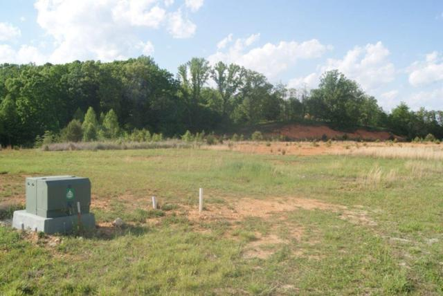 Lot# 47 Airstrip Lane, LaFollette, TN 37766 (#1043143) :: Shannon Foster Boline Group