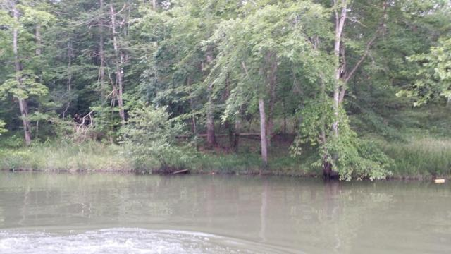 Bay View Circle, Lot 25, Ten Mile, TN 37880 (#1043197) :: Shannon Foster Boline Group