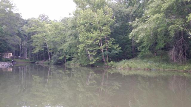 Bay View Circle, Lot 26, Ten Mile, TN 37880 (#1043208) :: Shannon Foster Boline Group