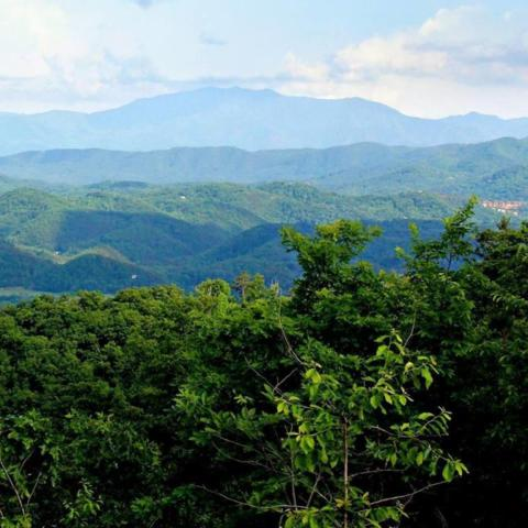 Lot 187 Smoky Bluff Tr, Sevierville, TN 37862 (#1043248) :: Billy Houston Group