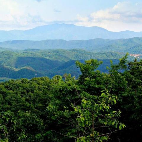 Lot 163 Smoky Bluff Tr, Sevierville, TN 37862 (#1043251) :: Billy Houston Group