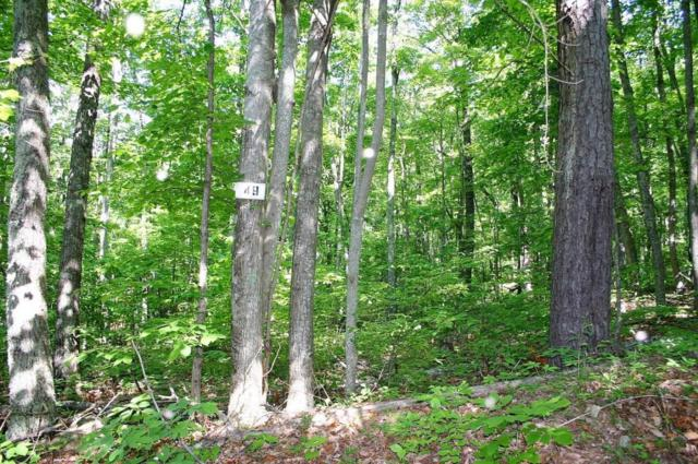 Lot 49 Green Bay Drive, Sevierville, TN 37876 (#1043272) :: Billy Houston Group