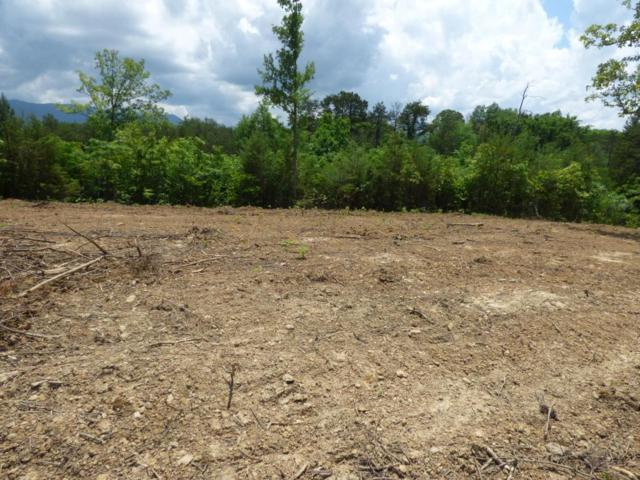 Lot 2a Martin Court, Dandridge, TN 37725 (#1043310) :: Billy Houston Group