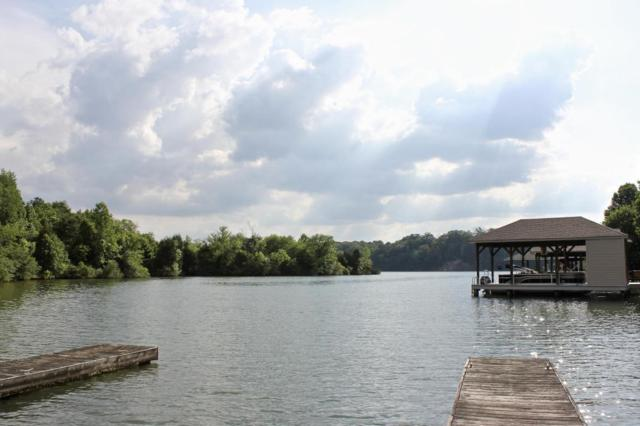 Indian Shadows Drive, Vonore, TN 37885 (#1043332) :: Shannon Foster Boline Group