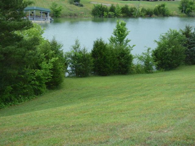 1887 Indian Creek Rd, Dandridge, TN 37725 (#1043340) :: Billy Houston Group