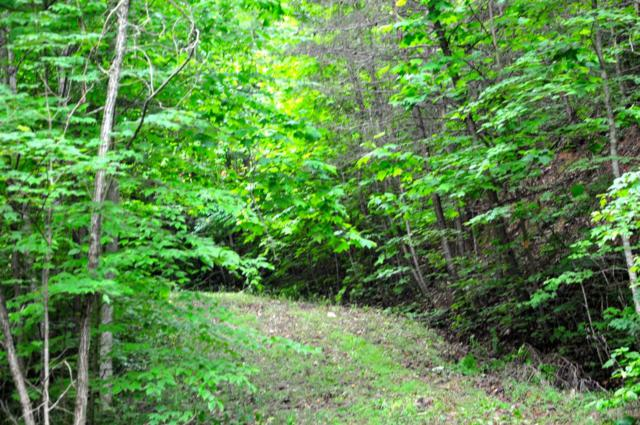 Greystone Way, Lot 44R, Townsend, TN 37882 (#1043372) :: Billy Houston Group