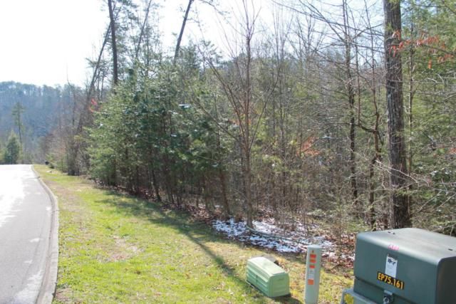 Lot 89 Smoky Cove Rd, Sevierville, TN 37876 (#1043484) :: Billy Houston Group