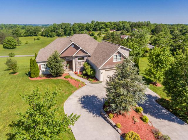 1514 Oakley Manor Court, Sevierville, TN 37862 (#1043505) :: Billy Houston Group