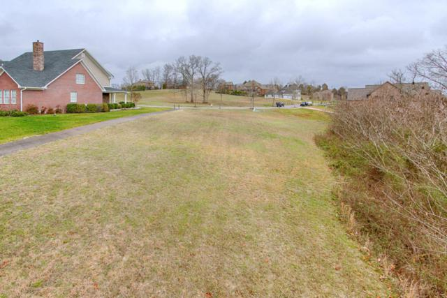 529 Lone Willow Drive, Knoxville, TN 37934 (#1043722) :: Billy Houston Group