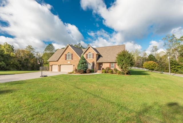 141 Mill Chase Drive, Strawberry Plains, TN 37871 (#1043842) :: Billy Houston Group