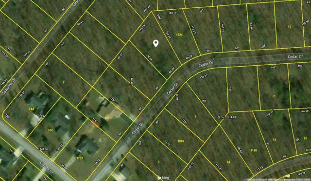 Cedar Drive, Crossville, TN 38555 (#1043845) :: Billy Houston Group