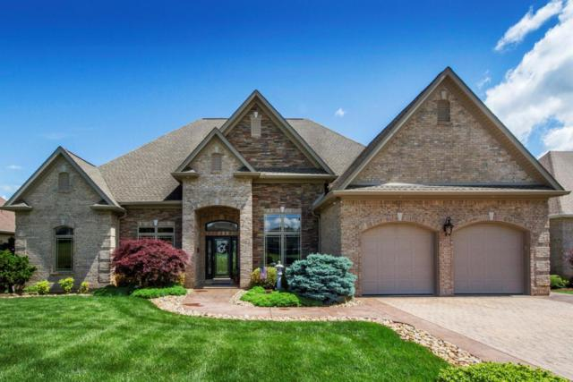261 Osprey Circle, Vonore, TN 37885 (#1043887) :: Shannon Foster Boline Group