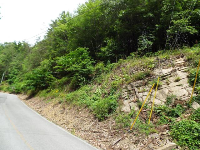 Lot 16 Sunset Rd, Sevierville, TN 37876 (#1043897) :: Shannon Foster Boline Group