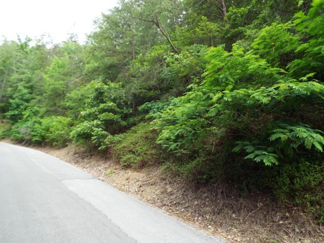 Lot 15 Sunset Rd, Sevierville, TN 37876 (#1043903) :: Shannon Foster Boline Group