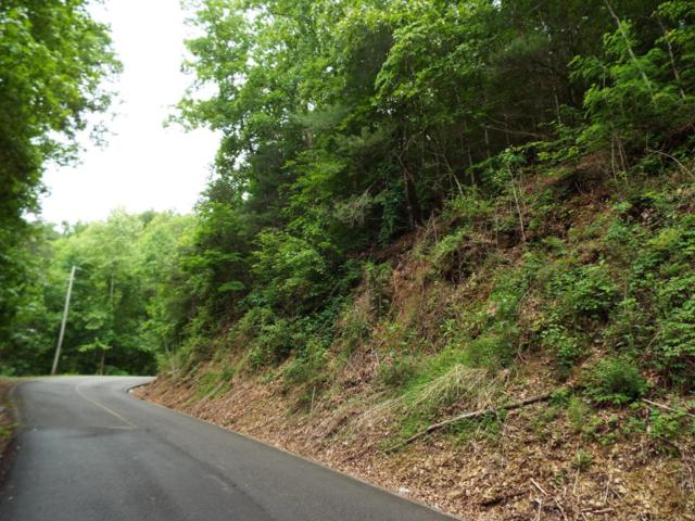 Lot 0014 Sunset Rd, Sevierville, TN 37876 (#1043907) :: Shannon Foster Boline Group