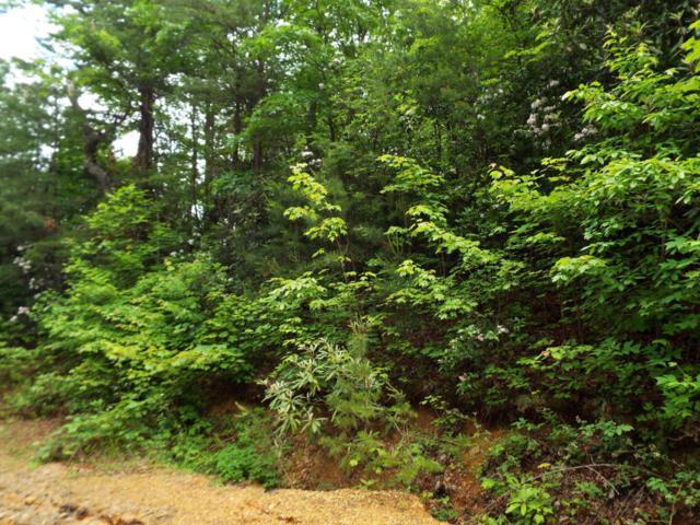 Lot 5 Overholt Trail Off, Sevierville, TN 37876 (#1043939) :: Billy Houston Group