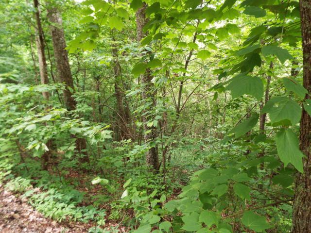Lot 11 Overholt Trail, Sevierville, TN 37876 (#1043943) :: Billy Houston Group