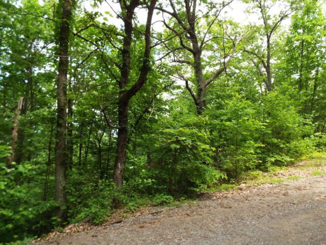 Lot 10 Overholt Trail, Sevierville, TN 37876 (#1043968) :: Billy Houston Group