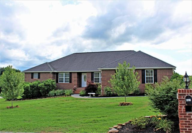 627 Tips Way, Maryville, TN 37804 (#1044061) :: Shannon Foster Boline Group