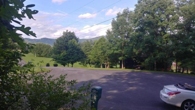 Lot 11 Laurelwood Ave, Sevierville, TN 37862 (#1044087) :: Venture Real Estate Services, Inc.