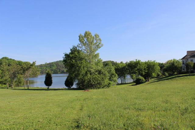 375 Pineberry Drive, Vonore, TN 37885 (#1044149) :: SMOKY's Real Estate LLC