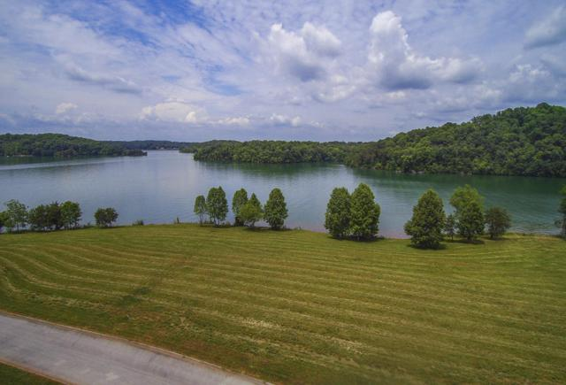260 Bay Pointe Rd, Vonore, TN 37885 (#1044279) :: Shannon Foster Boline Group