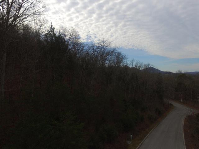 136 Eagles Ridge, Tazewell, TN 37879 (#1044340) :: Billy Houston Group