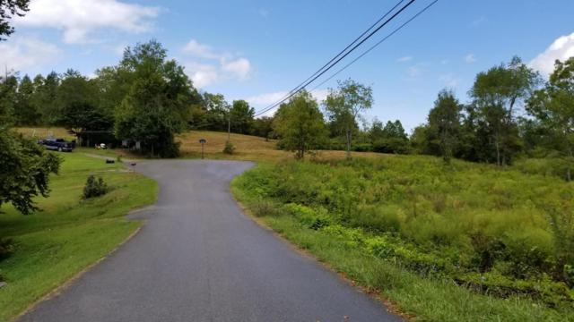 Parkview Circle, New Tazewell, TN 37825 (#1044659) :: Billy Houston Group