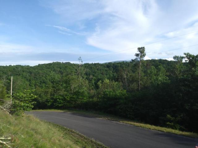 Fork Horn Tr, Dandridge, TN 37725 (#1044665) :: Billy Houston Group