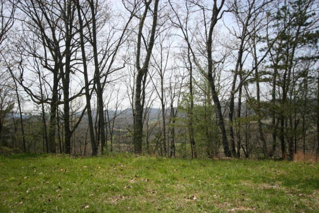 Lot # 18 Highlands Bluff, Tellico Plains, TN 37385 (#1044759) :: Realty Executives